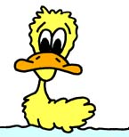 Duck_-_Cartoon_07